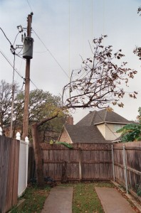 "The tree pruners ""probably laughed about it all day long,"" the angry homeowner says."